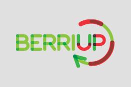 berriup logo